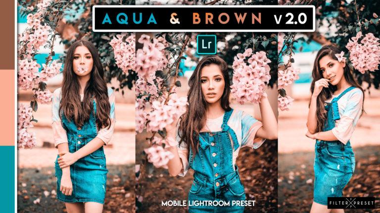Download Free Aqua & Brown v2.0 Mobile Lightroom DNG Presets of 2020 (.dng)
