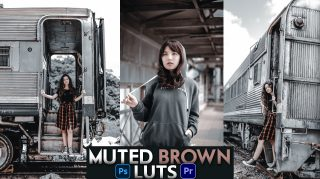 Download Free Muted Brown LUTs of 2020   How to Colorgrade Videos Like Muted Brown in Premiere Pro