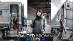 Download Free Muted Brown LUTs of 2020 | How to Colorgrade Videos Like Muted Brown in Premiere Pro