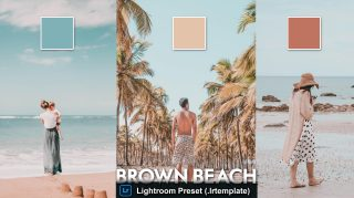 Download Free Brown Beach LUTs of 2020   How to Colorgrade Videos Like Brown Beach in Premiere Pro