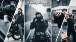 Download Free Alen Palander Inspired LUTs of 2020 | How to Colorgrade Videos Like Alen Palander in Premiere Pro