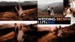 Download Free Wedding Brown LUTs of 2020 | How to Colorgrade Wedding Videos Like Wedding Brown Effect in Premiere Pro