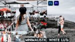 Download Free Minimalistic White LUTs of 2020 | How to Colorgrade Videos Like Minimalistic White in Premiere Pro