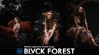 Download Free BLVCK FOREST Mobile Lightroom DNG Presets of 2020 | How to Edit BLVCK FOREST Effect to Photos