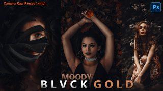 Download Free Moody BLVCK GOLD Camera Raw Presets of 2020 | Moody BLVCK GOLD Photoshop Preset of 2020 | How to Edit Like Moody BLVCK GOLD