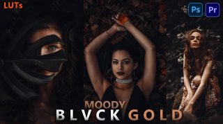 Download Free Moody BLVCK GOLD LUTs of 2021 | Moody BLVCK GOLD COLOR TONE | How to Colorgrade Moody BLVCK GOLD Tone to Videos in Premiere Pro
