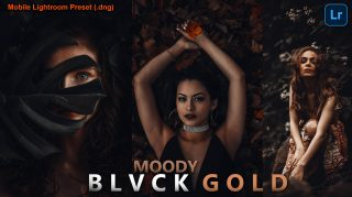 Download Free Moody BLVCK GOLD Mobile Lightroom DNG Presets of 2021 | How to Edit Like Moody BLVCK GOLD
