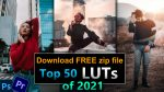 Top 50 LUTs of 2021 for Photoshop | Download zip File | Top 50 Color Presets for Premiere Pro | 50+ Free Colorlookup 3DLuts